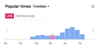 Google Popular Time